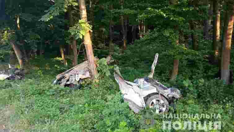 На Волині після зіткнення з деревом автомобіль розірвало навпіл