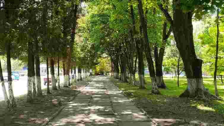 У львівському мікрорайоні Рясне облаштують великий сквер
