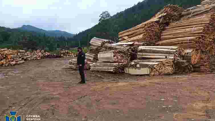 У заповіднику на Буковині виявили вирубку лісу на 3,3 млн грн