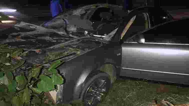 У нічній ДТП із конем біля Сторожинця загинув 21-річний чоловік