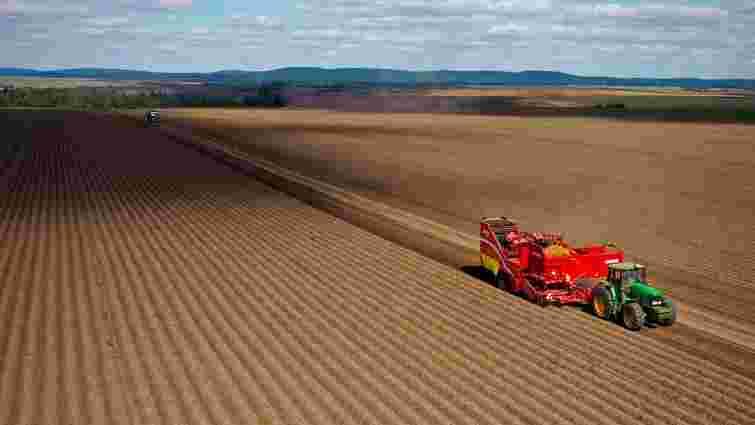 «Контінентал Фармерз Груп» збирає урожай картоплі