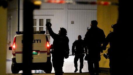 У Норвегії чоловік з луком напав на перехожих і вбив 5 людей