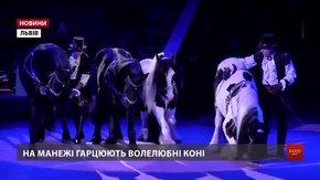 У Львівському цирку презентували нову програму «Екзотична арена»