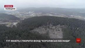Браконьєри вирубують ліс на території майбутнього національного парку. Відео з дрона