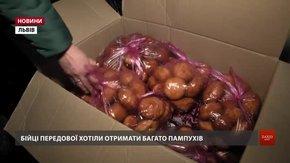 Зі Львова в зону ООС передали рекордну кількість пампухів, теплі речі та медикаменти