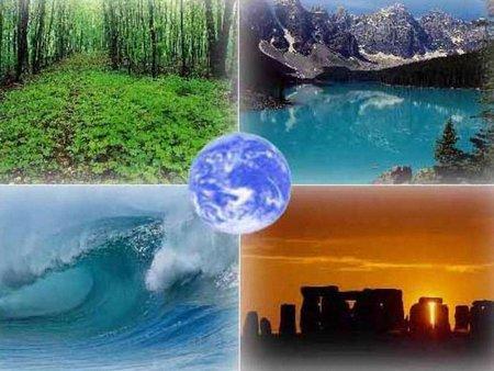 За 38 років біоресурси Землі скоротилися на 28%