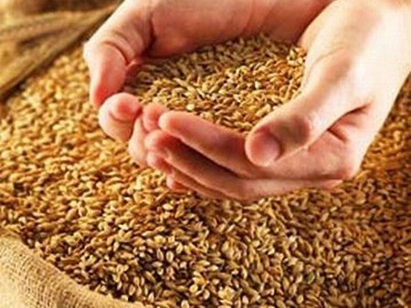 Зарубіжні трейдери припинили закупівлі українських зернових
