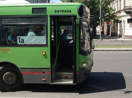 На маршрутах Львова буде ще два великі автобуси