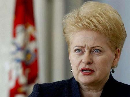 Україна стоїть на порозі громадянської війни, – Литва