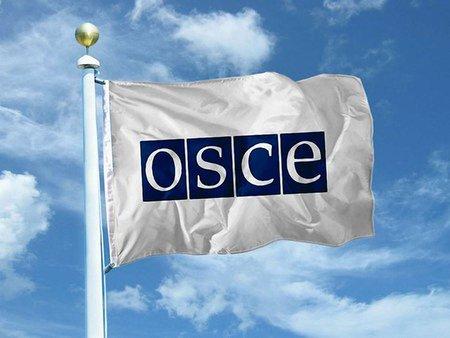 ОБСЄ призначила особистого представника по Україні