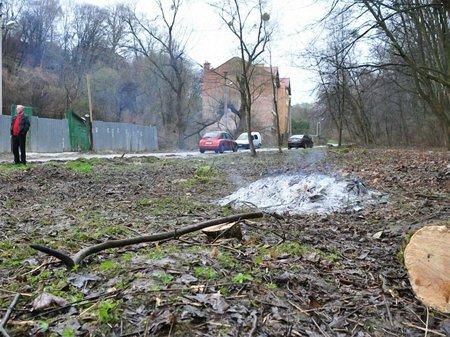 Через вирубку у Снопківському парку почали досудове розслідування