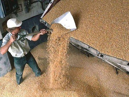 Україна доганяє США по експорту зернових, - експерт