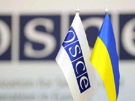 ОБСЄ максимально збільшує кількість представників в Україні
