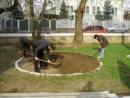 У Львові штрафують за незадовільне утримання приватних територій