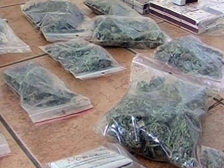 Закарпатець привіз до Львова марихуани на 80 тис. грн