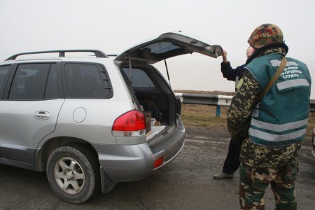 ДПСУ: У чотирьох автівках із Криму везли 1,3 мільйона гривень