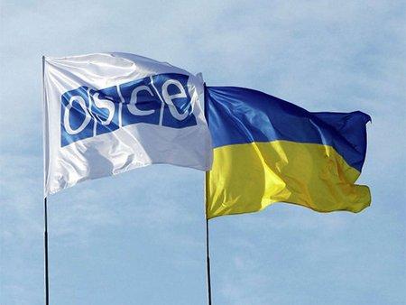 Вибори в Україні відбулися відповідно до стандартів, – ОБСЄ