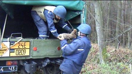 На Рівненщині селяни знайшли 117 мін