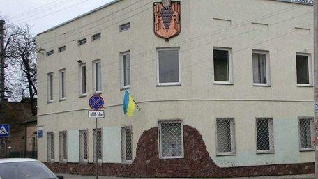 Європейський суд поновив на посаді заступницю мера Винників
