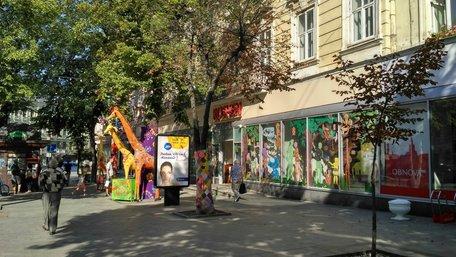 Львівська мерія вимагає від магазину «Roshen» зняти рекламні декорації з дерев