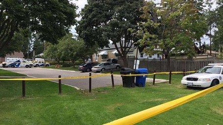 У Торонто серед білого дня трьох людей застрелили з арбалету