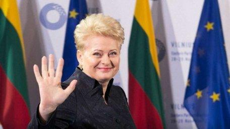 У Литві шпигуна РФ, який намагався влаштуватися в охорону Ґрібаускайте, засудили до 10 років