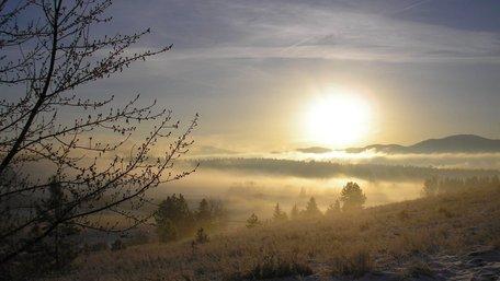У найближчі дні в Україні потеплішає і пройдуть дощі