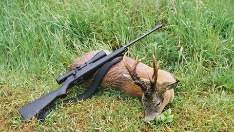 Працівників Карпатського біосферного заповідника звільнили за браконьєрство