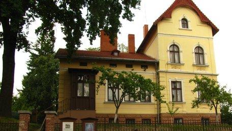 Дім Франка у Львові шукає меценатів для встановлення гойдалки на подвір'ї письменника