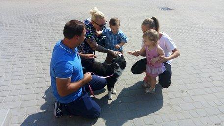 Кінологи ЛКП «Лев» почали підготовку собак-візитерів