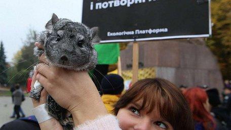 Львів'янка прийшла на антихутряний марш з 6-річною шиншилою. Фото дня