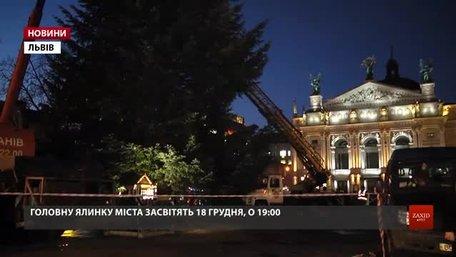 На площі перед Оперним театром встановили головну ялинку Львова