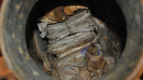 У лісі поблизу Рогатина місцеві жителі знайшли архів УПА