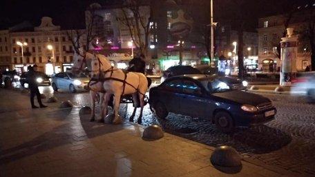 У центрі Львова п'яний кучер прогулянкової карети скоїв ДТП та втік