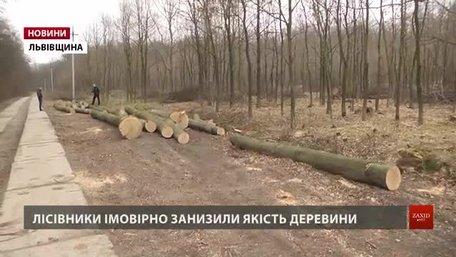 Працівник Дрогобицького лісгоспу впіймав своїх колег на порушеннях під час вирубки дуба