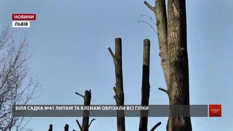 Львівські фахівці розповіли, до чого призводить варварська обрізка дерев
