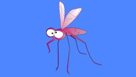 Як вберегтись від комарів?