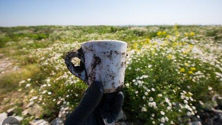 На Грибовицькому сміттєзвалищі активно відновлюється природа. Фото дня