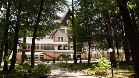 Трухляве дерево впало на сім'ю у Брюховичах, двоє дітей у важкому стані