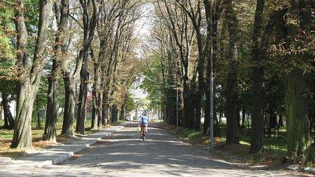 Львівська мерія запевнила, що збереже сквер біля психіатричної лікарні