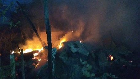 Під час пожежі у господарській будівлі на Львівщині загинули тварини