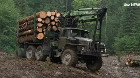 Британські ЗМІ розповіли про  переслідування в Україні борців з чорними лісорубами
