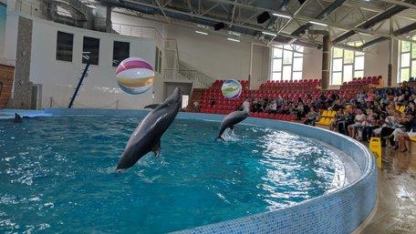 Трускавецький дельфінарій оштрафували на 246 тис. грн за нелегальну музику