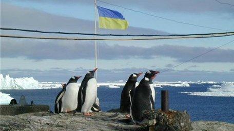 Кабмін виділив 252 млн грн на придбання судна українським полярникам для вивчення Антарктиди