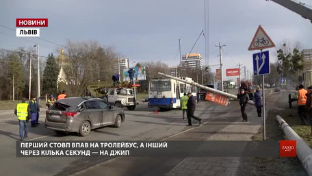Один зі стовпів на вул. Науковій у Львові впав на автомобіль екс-тренера збірної України з боксу