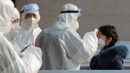 Міністр економіки Милованов заявив, що Україна може заробити на коронавірусі