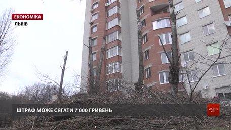 У Львові почали штрафувати за неправильну обрізку дерев