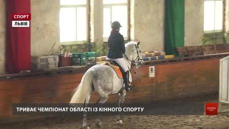 Львівські вершники визначають наймайстерніших у подоланні перешкод