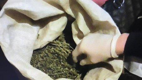 На Старосамбірщині правоохоронці затримали наркоторговця з 2 кг марихуани й таблетками