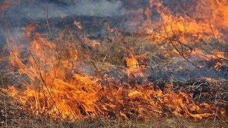Через підпал сухої трави у Львові загинув 64-річний чоловік